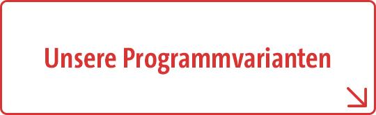 Schüleraustausch Programmvarianten
